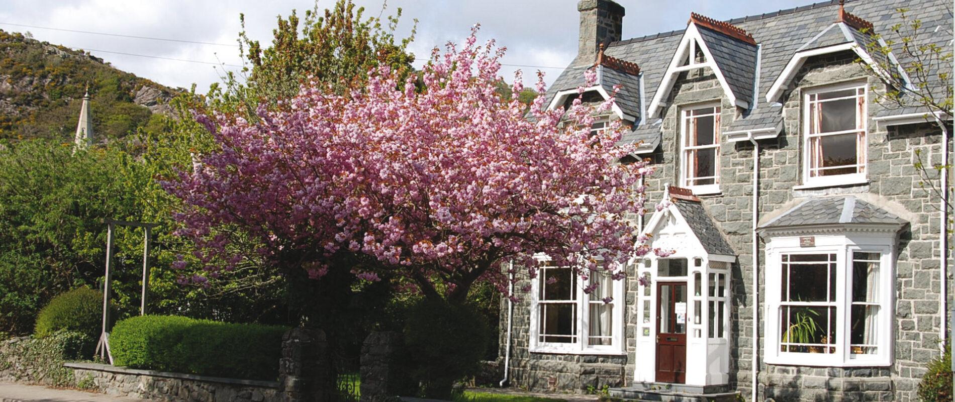 Snowdon Lodge